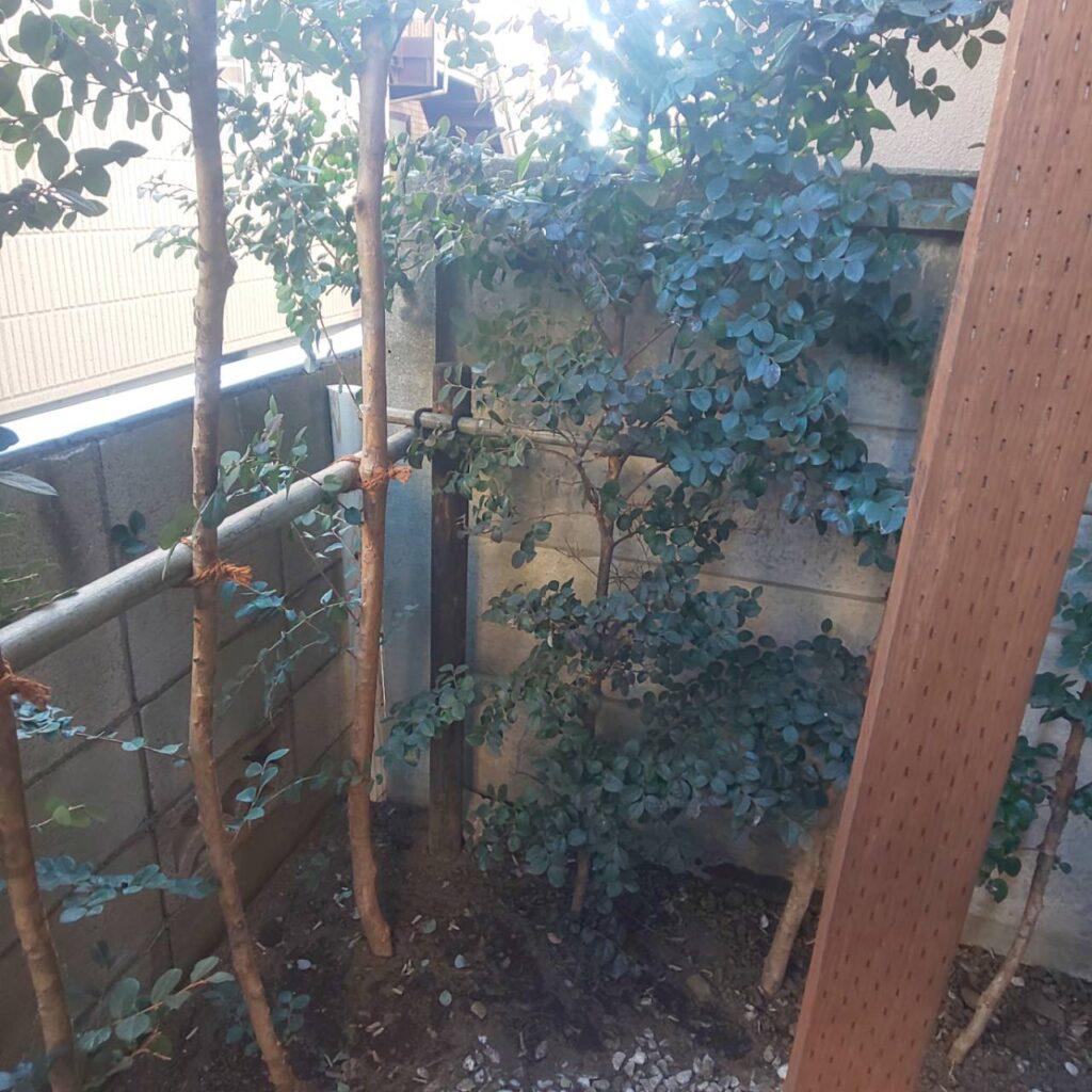 施工竹布掛け|稲葉造園