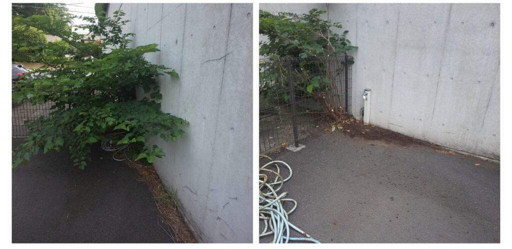 202105駐車場05|稲葉造園