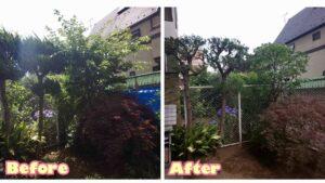 202106マンション1階庭植栽管理01|稲葉造園