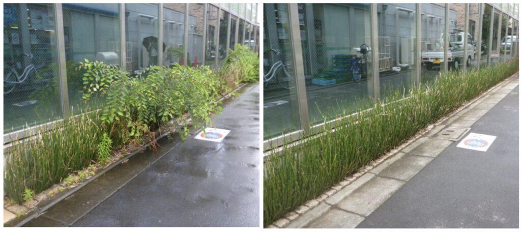 202106防草砂利02|稲葉造園